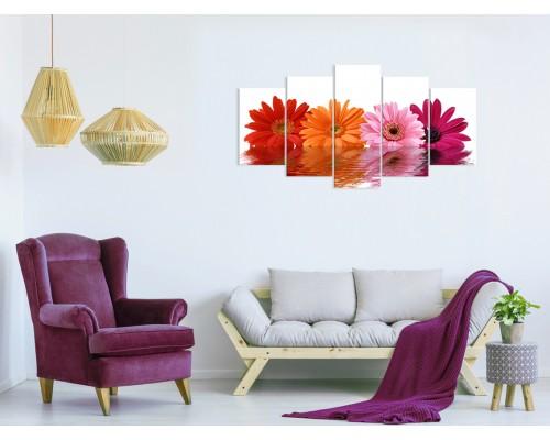 Цветы герберы № 528ЦРО