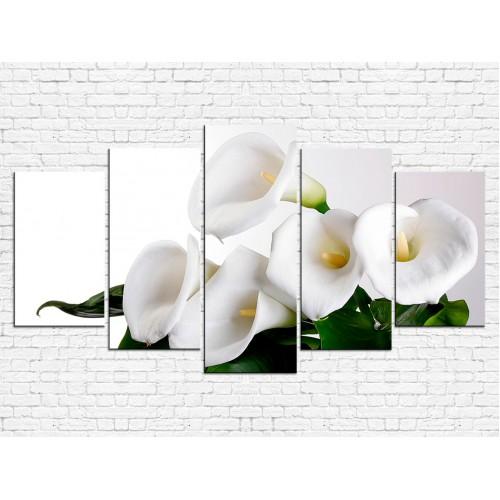 Цветы каллы № 8029ЦК
