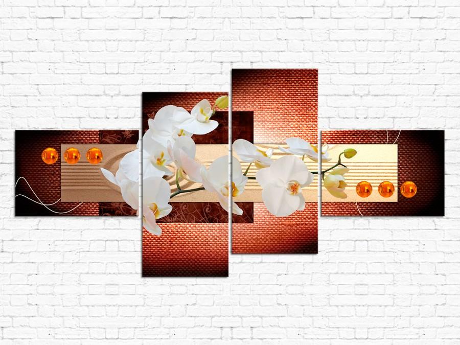 Цветы орхидеи № 063Ц