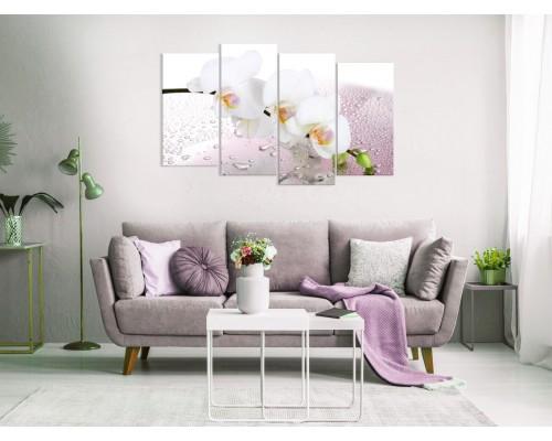 Цветы орхидеи № 0806ЦО