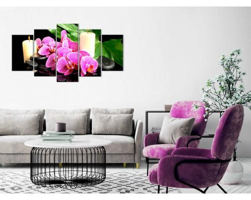 Цветы орхидеи № 8023ЦО