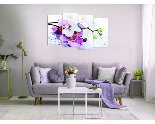 Цветы орхидеи № 858Ц