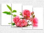 Цветы пионы № 08094ЦП