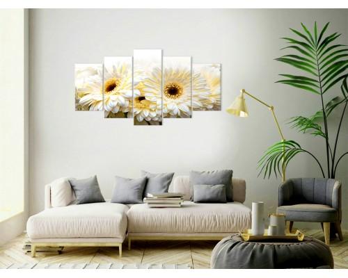 Цветы герберы № 872Ц