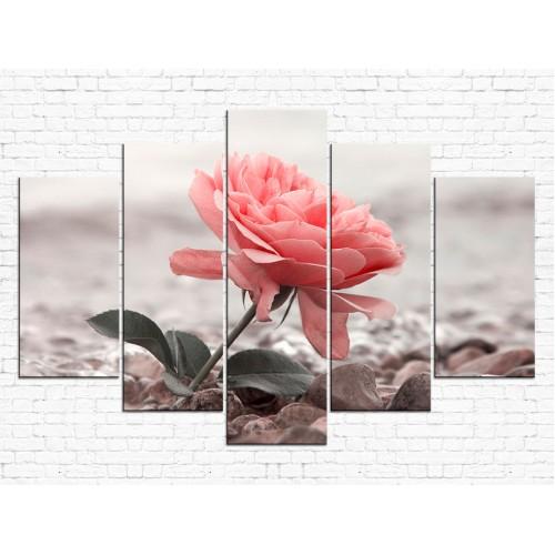 Цветы розы № 08068ЦР