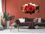 Цветы розы № 531ЦР