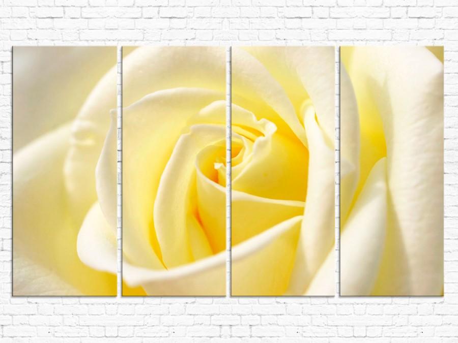 Модульная картина Роза № 561ЦР
