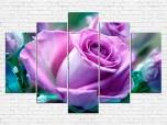 Цветы розы № 587Ц