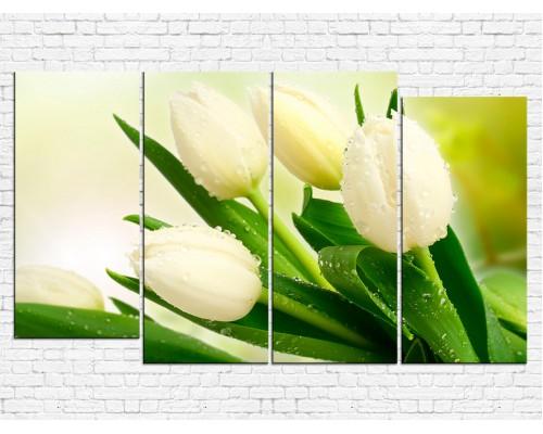 Цветы тюльпаны № 0866ЦТ