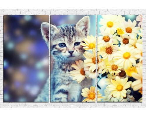 Модульная картина кошки № 0001ЖК