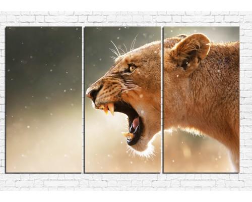 Модульная картина Лев №  0001ЖЛВ